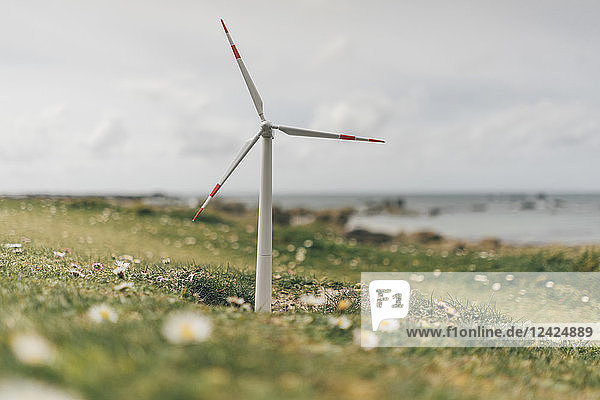 France  Brittany  Meneham  miniature wind turbine at the coast