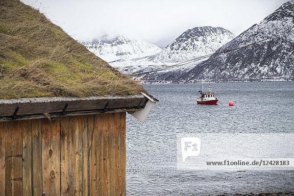 Fishing boat in water off the coast of Tromso  Norway