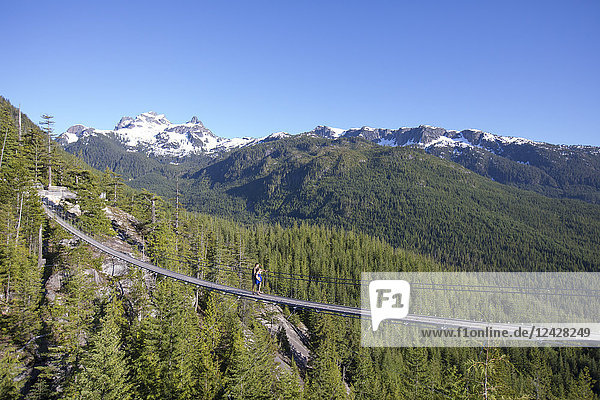 Distant view shot of couple on rope bridge at top of Sea to Sky Gondola  Vancouver  British Columbia  Canada