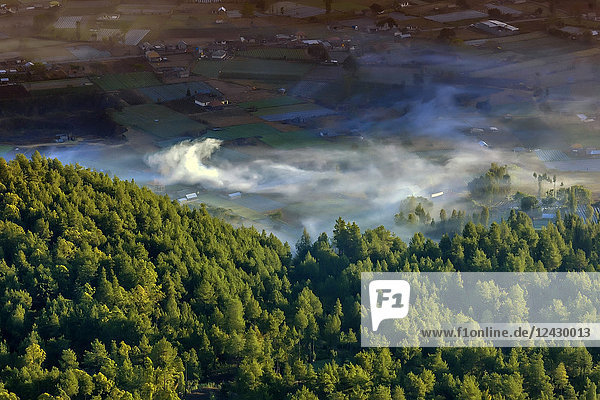 Scenic aerial view of forest and fields with fog  Mount Batur  Bali  Indonesia