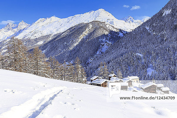 A trail in the snow leads to the traditional huts of Blatten  Zermatt  Canton of Valais (Wallis)  Switzerland  Europe
