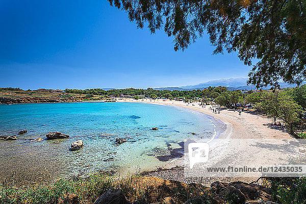 Beach Canteen Iguana  Crete  Greek Islands  Greece  Europe
