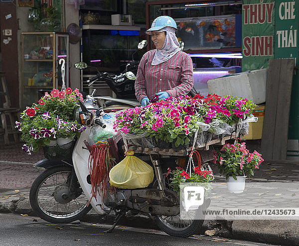 A woman selling pots of petunias from a bicycle in Hoang Hoa Tham Street in Hanoi  Vietnam  Indochina  Southeast Asia  Asia
