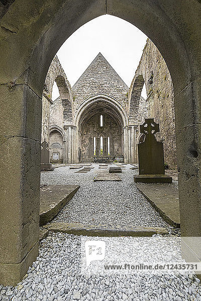 Ruins of the Cistercian Corcomroe Abbey  The Burren  County Clare  Munster  Republic of Ireland  Europe