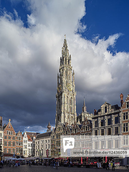 Houses on Grote Markt and Cathedral Tower  Antwerp  Belgium  Europe