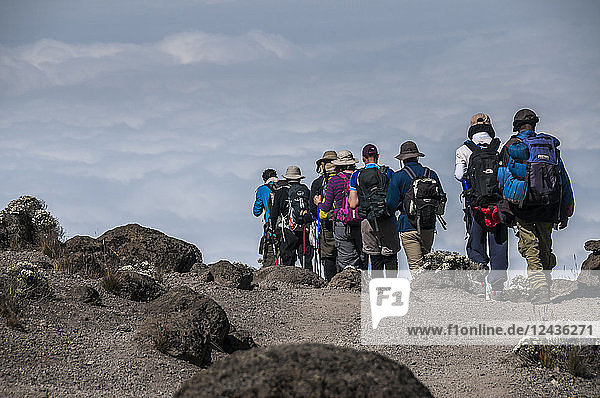 A group of Trekkers on the Machame Route on Mount Kilimanjaro descending towards the clouds  Tanzania  East Africa  Africa
