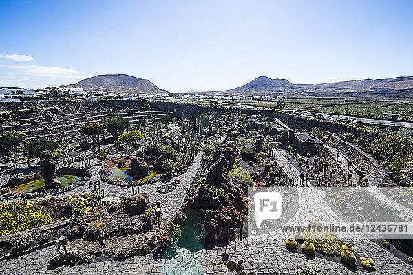 Jardin de Cactus (Cactus Garden) Cesar Manrique  Lanzarote  Canary Islands  Spain  Atlantic  Europe