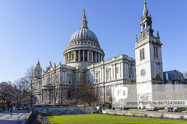 St. Paul's Cathedral  London  England  United Kingdom  Europe