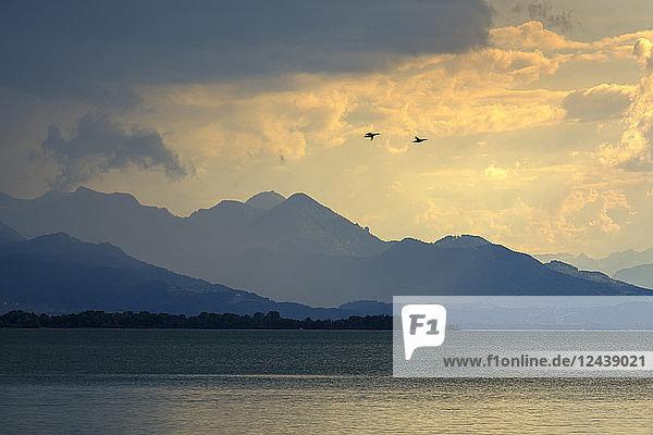 Germany  Bavaria  Chiemgau Alps  Chieming at Chiemsee  dark clouds over Lake Chiemsee