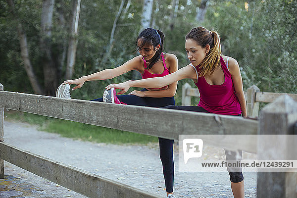 Two active women stretching at a brick wall