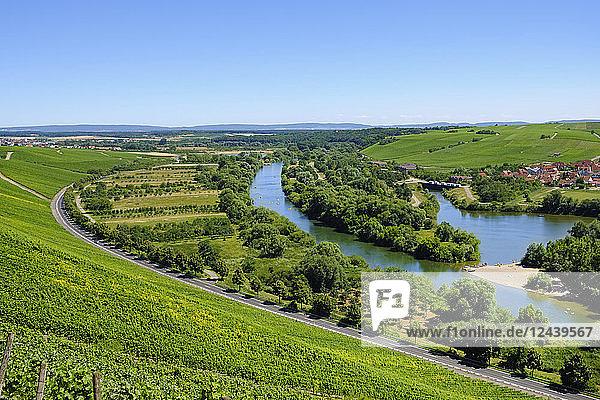 Germany  Bavaria  Franconia  Main river loop at the Old Main river
