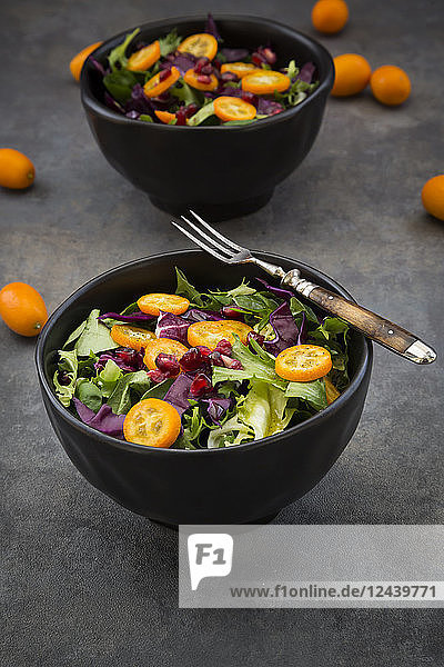 Bowl of mixed green salad with red cabbage  kumquat and pomegranate seeds