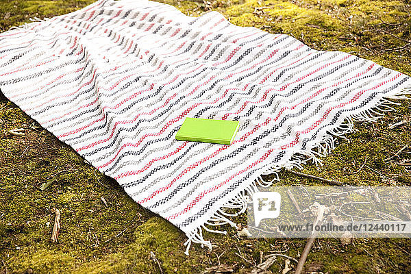 Book lying on blanket in forest
