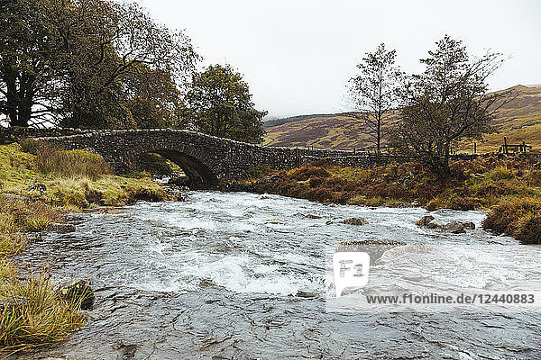 United Kingdom  England  Cumbria  Lake District  stone bridge over the river Duddon