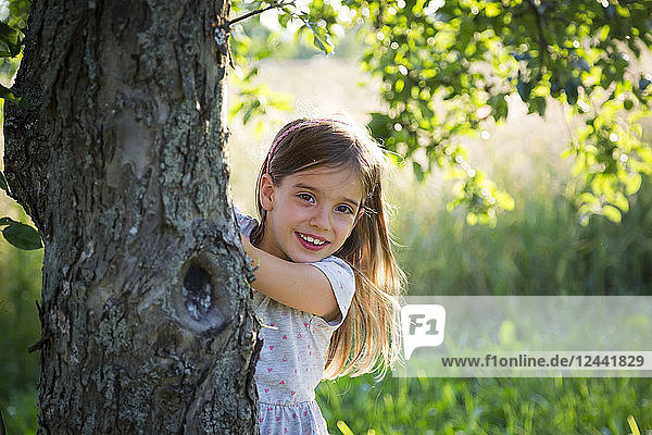 Young girl behind tree trunk at summer evening
