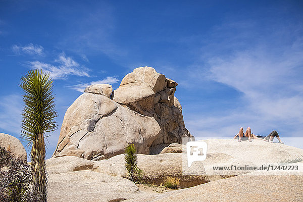 Two people sunbathing on a rock in Joshua Tree National Park; California,  United States of America