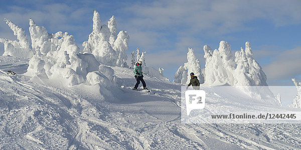 Snowboarding on a run at Sun Peaks ski resort with snow ghosts at the top of the mountain; Kamloops  British Columbia  Canada