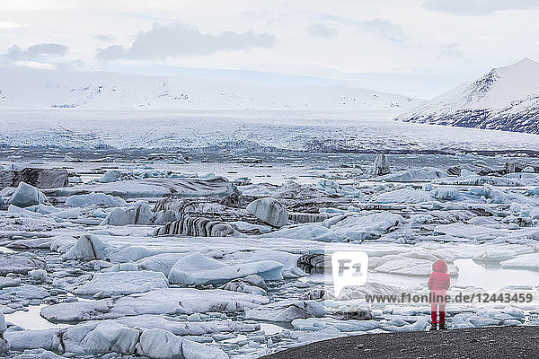 Person standing looking at the ice and icebergs at Jokulsarlon  South coast  Iceland