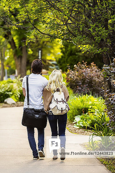 A young couple walks away from the camera down a path on a university campus holding hands  Edmonton  Alberta  Canada