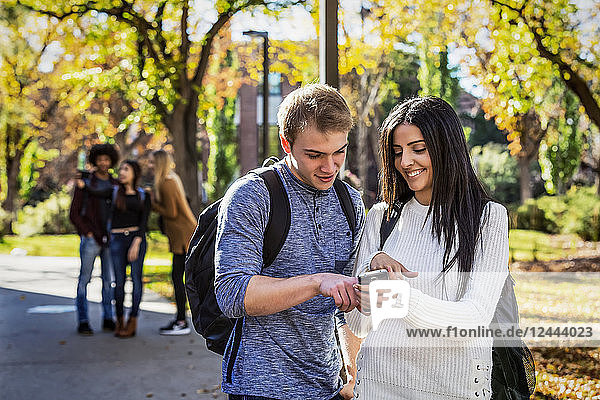 A male and female university student stand on a path looking at a smart phone together with a group of fellow students in the background  Edmonton  Alberta  Canada