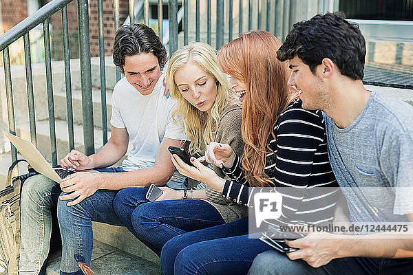 Four students sitting in a row on a step using their technology on the university campus and laughing together  Edmonton  Alberta  Canada
