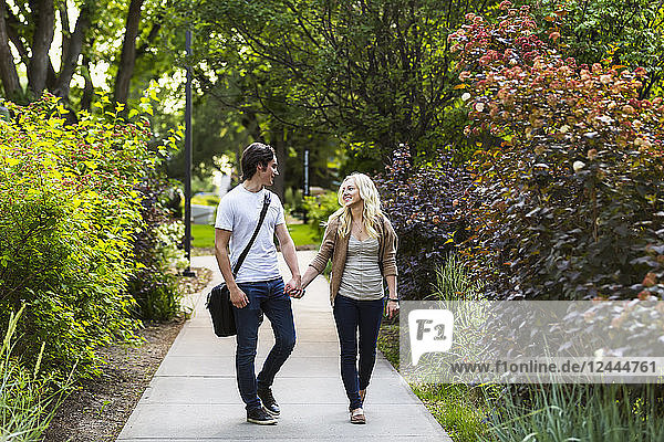 A young couple walking down a path on the university campus holding hands and talking  Edmonton  Alberta  Canada
