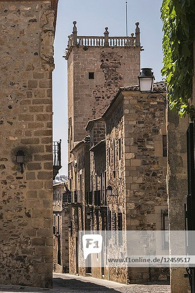 Typical narrow street of the old town of Caceres  Spain.