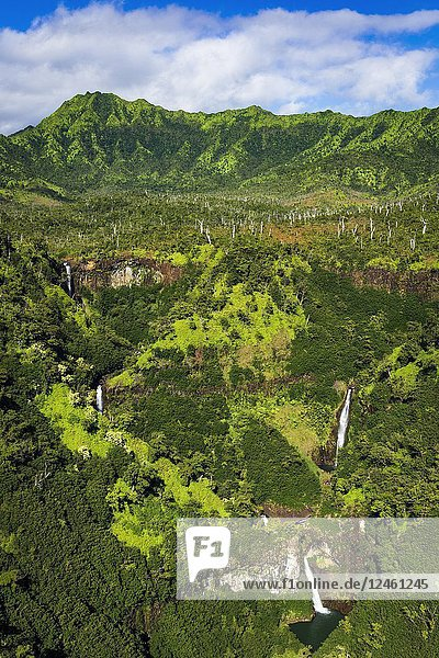 Kahili Falls (aerial)  Hanapepe Valley  Kauai  Hawaii USA.