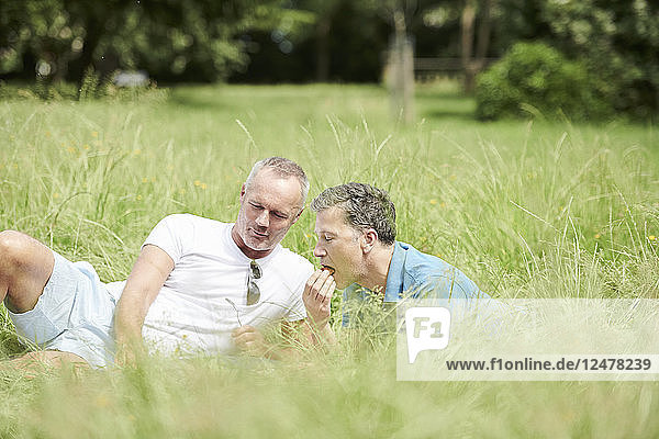 Gay couple having picnic in field