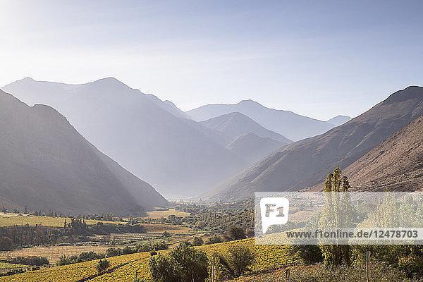 Landschaft im Elqui-Tal  Chile
