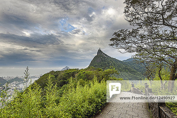 View To Corcovado Mountain From Mirante Dona Marta  Tijuca Forest National Park  Rio De Janeiro  Brazil