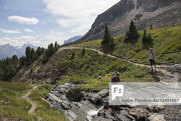 Hikers hop across rocks in stream  mountain meadow