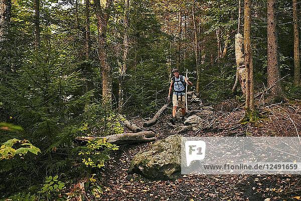 A Man Hikes Along The Appalachian Trail