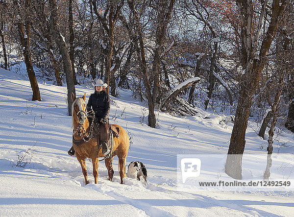 Young women sits on horse in a snowy wood with her dog at her side.