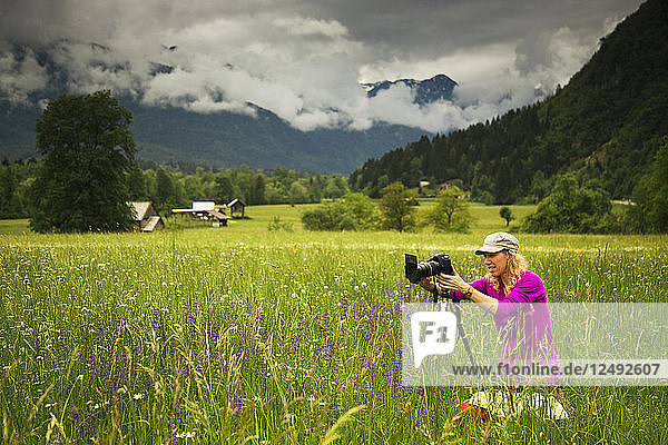 Tourist Honora Bauman photograph a wildflower field in springtime near Bohinjska Bistrica  in the Julian Alps  Slovenia