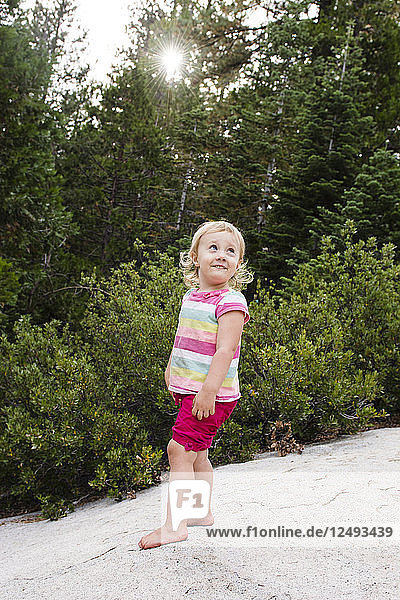 Portrait of smiling toddler girl standing on large rock with sunburst through woods in background near Strawberry  California.