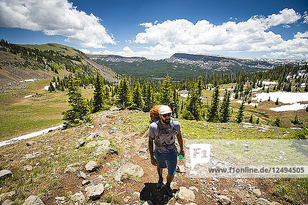 A backpacker hikes through the Flat Tops Wilderness in Yampa  Colorado on a sunny day.