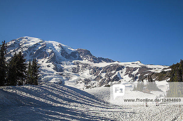 Two hikers begin the climb to the summit of Mount Rainier National Park  Washington  USA.