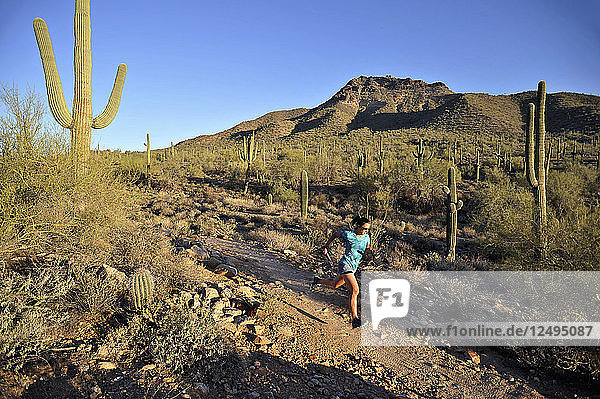 Woman trail running in Usery Mountain Park  Phoenix  Arizona November 2011. The park is known for spring wildflowers and varieties of cactus.