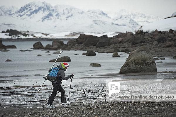 Female Skier Hiking On Coast Of Augustine Island  Alaska  Usa