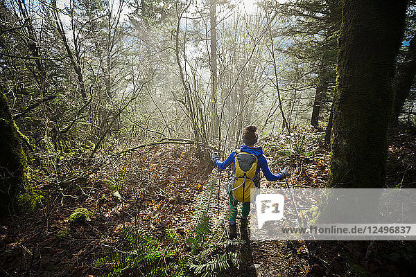 A young active woman hiking through a dense foggy forest.