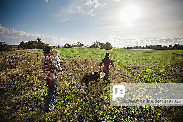 A young couple walk through a grass farm field with their baby and Bernese Mountain Dog.