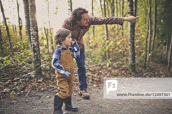 A father points to a birds nest to show his young son.