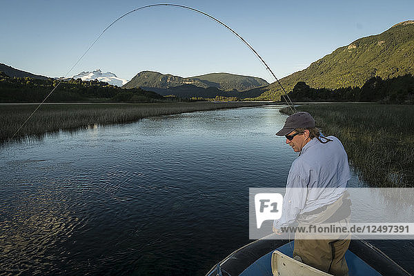 Fly fisherman catching a trout on Rio Manso in Nahuel Huapi National Park near Bariloche  Argentina.