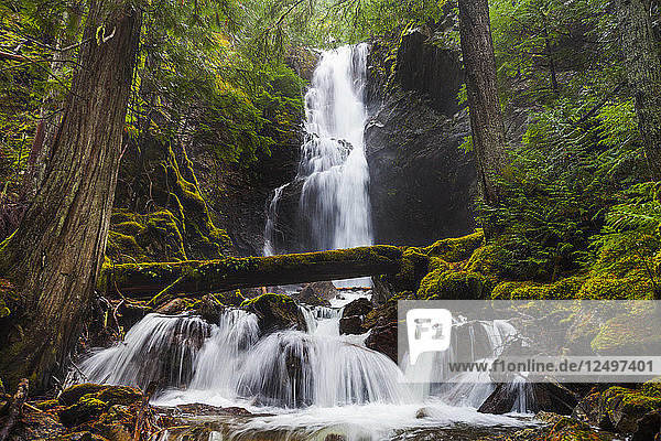 Cedar Hollow Falls  located along the Ross Dam Trail in the North Cascades National Park  Washingon.