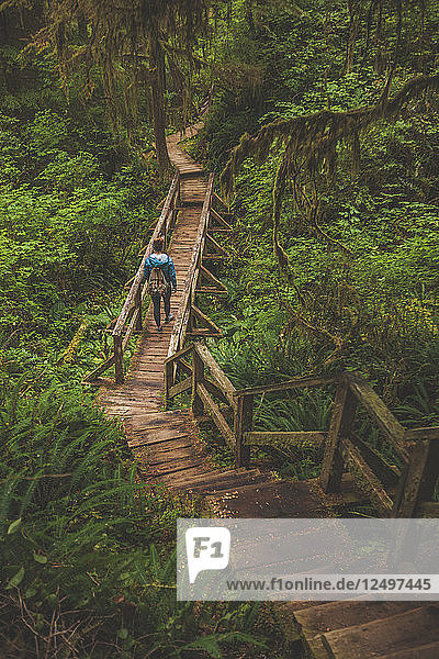 A Woman Hikes Across A Wooden Bridge In Pacific Rim National Park  British Columbia