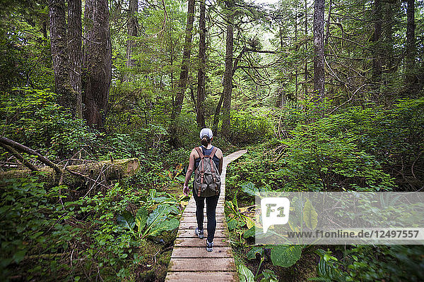 Hiking In Pacific Rim National Park  British Columbia