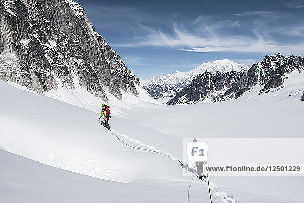 Two People Climbing On The Pika Glacier In Denali National Park