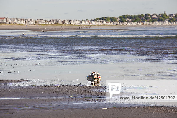 Sneakers sitting in the sand on the beach with beach cottages in the background.