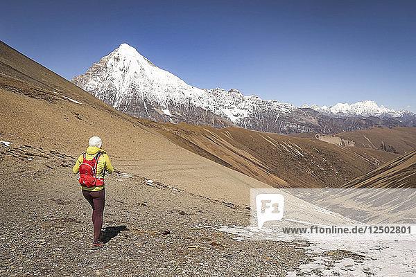 Trail Runner Hiking On The Snowman Trekking Route In Bhutan